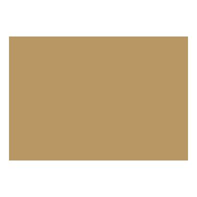 BAS Fiscal