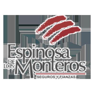 Espinosa de los Monteros, Seguros y Finanzas
